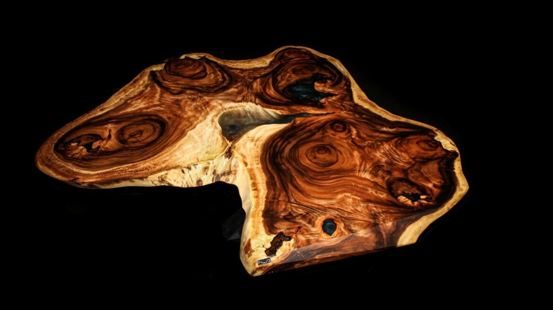 Z kroniky drevín: Exotický dažďový strom s jedinečnými vlastnosťami | Suar